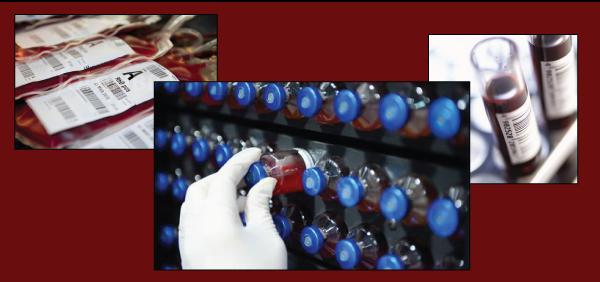 blood-storage-13